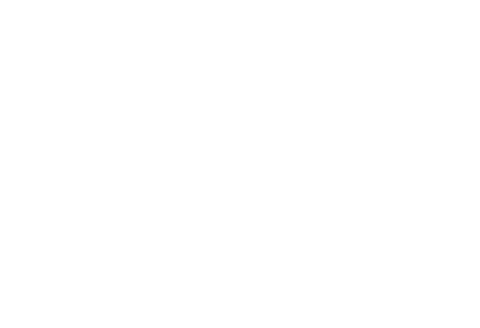 Damplings - Ravioleria Roma - From Asia to Rome